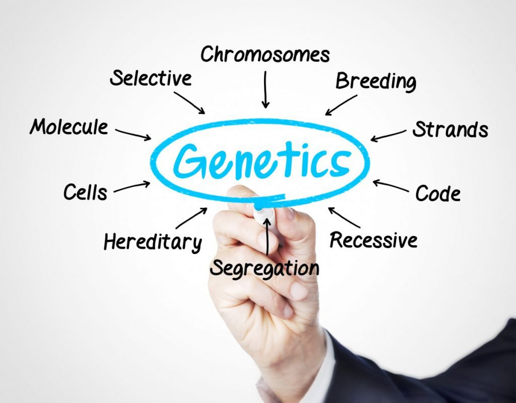 Genetics and Hair Care