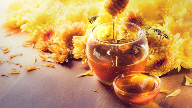 Best Shampoos With Honey